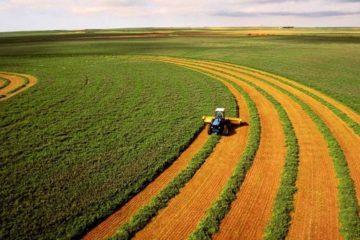 Можно ли построить дом на земле сельхозназначения