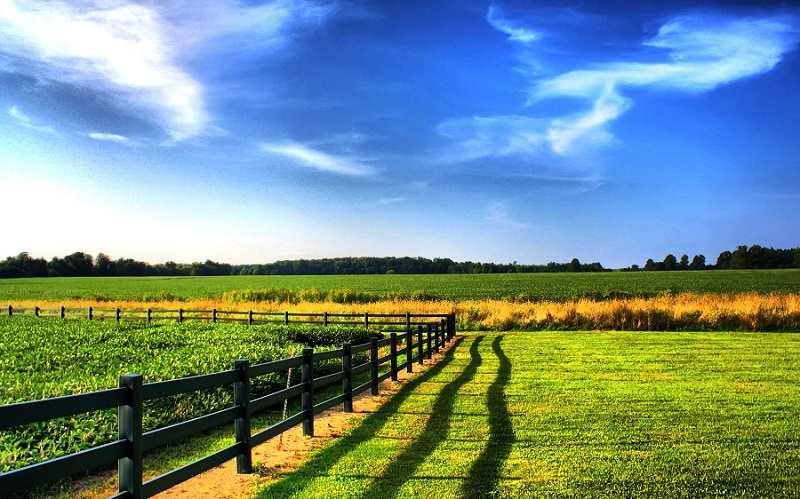 Стоимость пая земельного участка